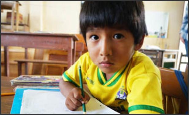 Skole og utdanning i Bolivia